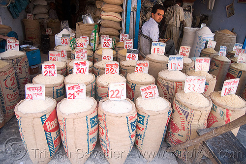 the price of rice - delhi (india), bags, bulk, delhi, india, price, rice, shop, store