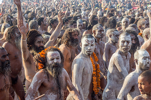 procession of naga babas covered with vibhuti sacred ash at kumbh mela (india), beard, crowd, dreadlocks, dreads, hindu, hinduism, holy ash, kumbh maha snan, kumbha mela, maha kumbh mela, mauni amavasya, men, naga babas, naga sadhus, naked, procession, sacred ash, triveni sangam, vibhuti, walking