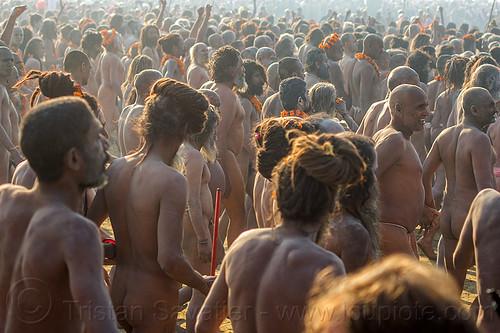 procession of naga babas (hindu devotees) - kumbh mela (india), crowd, hindu, hinduism, holy ash, kumbh maha snan, kumbha mela, maha kumbh mela, mauni amavasya, men, naga babas, naga sadhus, naked, procession, sacred ash, triveni sangam, vibhuti, walking