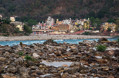 rishikesh and the ganges river (india), ashrams, buildings, ganga river, ganges river, rishikesh, river bed, rocks, stones, water
