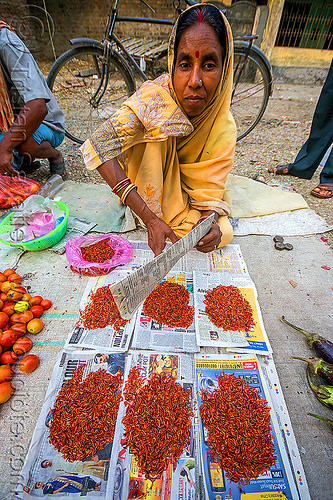 river shrimps at street market (india), freshwater prawns, freshwater shrimps, gairkata, river prawns, river shrimps, stall, street market, vendor, west bengal, woman