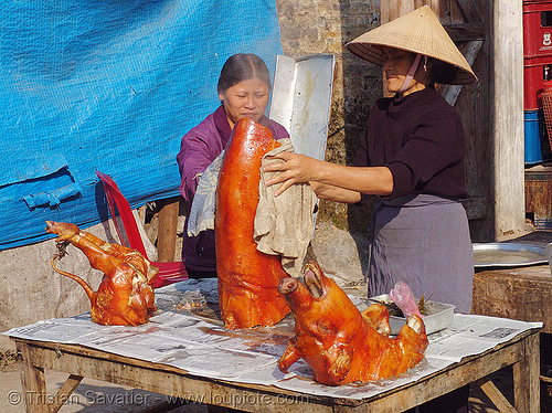 roasted piglet - vietnam, cooked, food, lang sơn, meat, people, pig, pig head, pork, roasted pig
