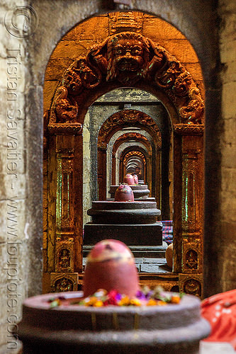 row of shiva lingas - pashupatinath temple - kathmandu (nepal), flower offerings, flowers, hindu temple, hinduism, kathmandu, lingams, maha shivaratri, pashupatinath temple, row, shiva lingam, shrines, stone vaults, vanishing point