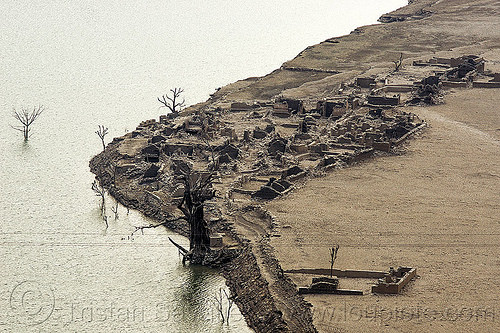 ruins of submerged village - tehri dam reservoir (india), artificial lake, bhilangna valley, dead trees, india, reservoir, ruins, tehri lake, village