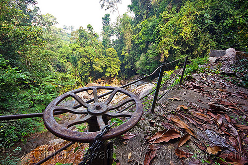 aqueduct valve, forest, gunung gading, jungle, rain forest