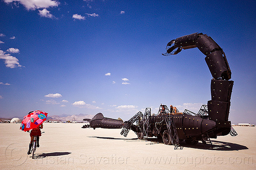 scorpion art car - burning man 2012, bicycle, burning man, mutant vehicles, scorpion art car, tail, umbrella