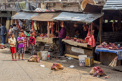 severed cow heads at meat market (india), beef lungs, children, cow heads, east khasi hills, kids, meat market, meat shop, meghalaya, pynursla, raw meat, severed head, street