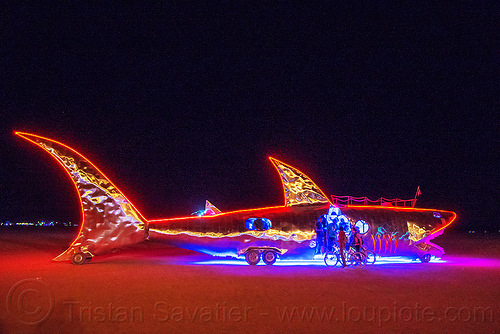 shark art car at night - burning man 2016, burning man, fish, glowing, mutant vehicles, night, shark art car