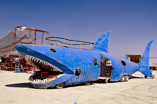 shark art car - burning man 2012, burning man, shark art car