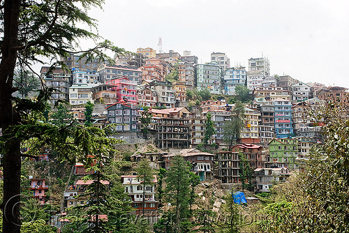 shimla skyline (india), buildings, city, cityscape, houses, india, mountain, mountainous, shimla, steep, town