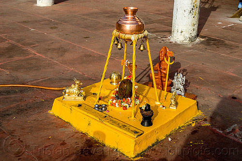 shiva linga and kalash  (india), bells, brass jar, flower offerings, hinduism, india, kalash, rishikesh, shiva lingam, water jar, yellow