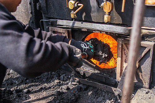 shoveling coal in furnace of steam locomotive - darjeeling (india), boiler, burning, cab, darjeeling himalayan railway, darjeeling toy train, fire, flames, man, narrow gauge, people, railroad, steam engine, steam train engine, worker