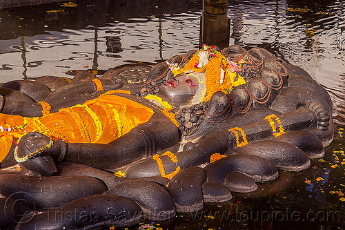 sleeping vishnu in pond - budhanikantha temple (nepal), 11, budhanikantha temple, eleven-head, eleven-headed, floating vishnu, flower offerings, hindu temple, hinduism, jalakshayan narayan, lying down, marigold flowers, naga snake, nāga snake, orange flowers, pond, pool, sculpture, sleeping vishnu, statue, water