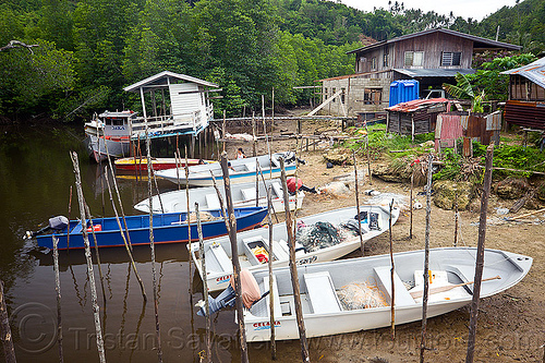 mooring poles, boat landing, boats, fishing boats, forest, houses, mangrove, rain forest, river, small boats, village, water