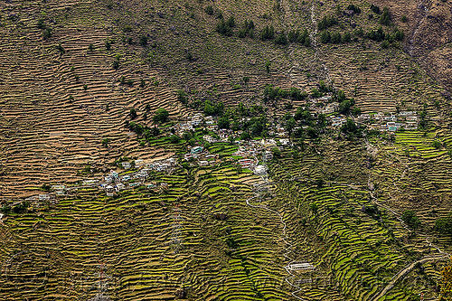 small village on terrace fields (india), agriculture, houses, mountains, terrace farming, terrace fields, village