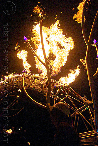 soma - giant neuron by the flaming lotus girls - burning man 2009, dendrites, fire, flames, flaming lotus girls, neurone, night, soma