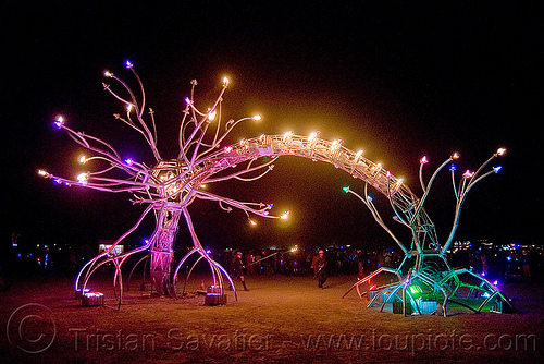 soma - giant neurone by the flaming lotus girls - burning man 2009, art installation, burning man, dendrites, flaming lotus girls, neurone, night, soma