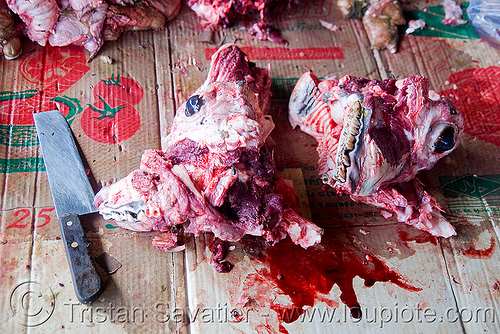 split cow head in meat market (laos), beef, blood, bloody, butcher knife, cleaver, cow head, deboned, eyes, meat market, meat shop, raw meat, split, teeth, water buffalo