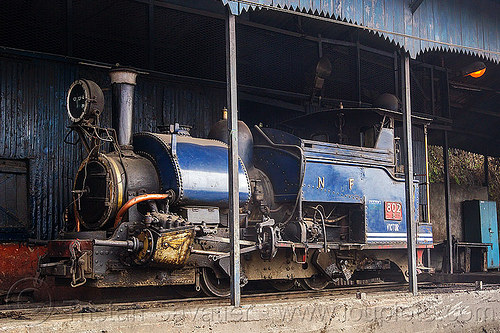 steam locomotive - darjeeling train depot (india), 802 victor, darjeeling himalayan railway, darjeeling toy train, narrow gauge, railroad, steam engine, steam locomotive, steam train engine, train depot, train yard