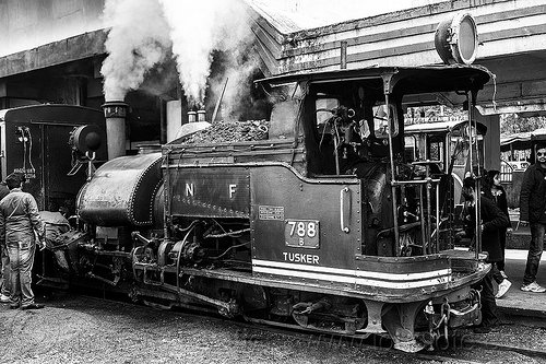 steam locomotive pulling passenger train - darjeeling station (india), 782 mountaineer, cab, darjeeling himalayan railway, darjeeling toy train, men, narrow gauge, people, railroad, smoke, smoking, steam engine, steam locomotive, steam train engine, train station, workers