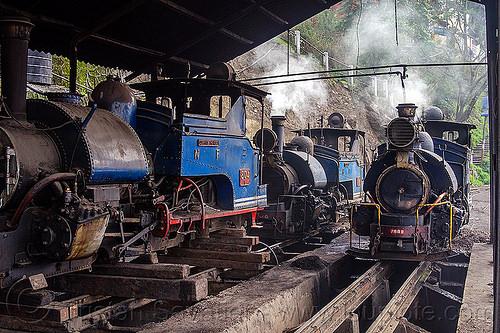 steam locomotives - darjeeling train yard (india), 782, 782 mountaineer, 788, 788 tusker, 804, 804 queen of the hills, darjeeling himalayan railway, darjeeling toy train, locomotive, narrow gauge, railroad, railroad tracks, rails, smoke, smoking, steam engine, steam locomotive, steam train engine, train depot