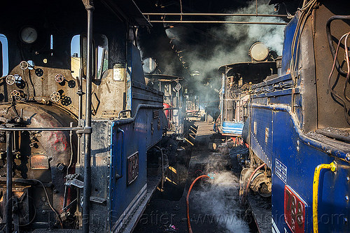 steam locomotives in the darjeeling train yard (india), 782 montaineer, 788 tusker, darjeeling himalayan railway, darjeeling toy train, india, narrow gauge, railroad, smoke, smoking, steam engine, steam locomotive, steam train engine, train depot, train yard