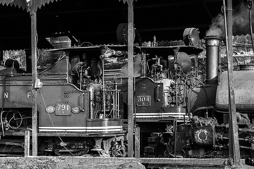 steam locomotives parked in darjeeling train yard (india), 782 mountaineer, 791, 804 queen of the hills, darjeeling himalayan railway, darjeeling toy train, india, narrow gauge, railroad, steam engine, steam locomotive, steam train engine, train depot, train yard