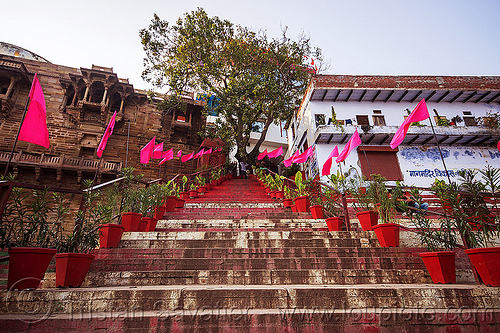 steps on the ghats of varanasi (india), buildings, ghats, houses, india, pink flags, stairs, steps, tree, vanishing point, varanasi