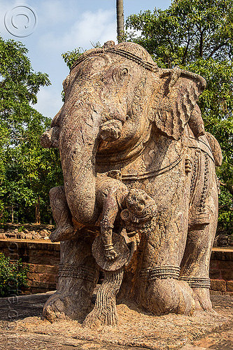 stone elephant - konark sun temple (india), hindu temple, hinduism, india, konark sun temple, sculptures, statue, stone elephant