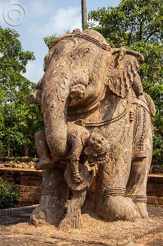 stone elephant - konark sun temple (india), hindu temple, hinduism, sculptures, statue