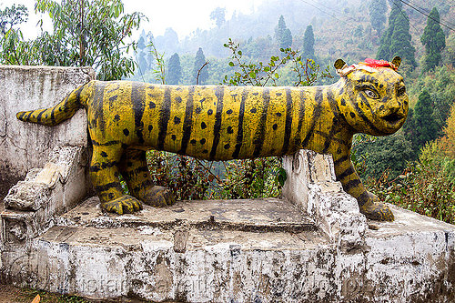 stone tiger at hindu shrine (india), hindu temple, hinduism, india, sculpture, shrine, statue, stone tiger, west bengal