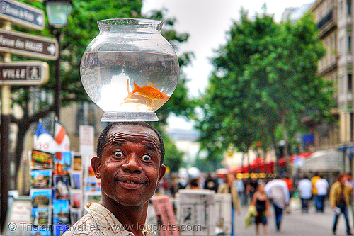 street performer with fishbowl on head (paris), african, ali, black man, bowl, fish, fishbowl, goldfish, head, juggler, paris, street performer