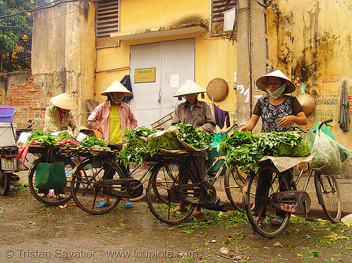 street vendors - bicycles - produce market - vietnam, bicycles, bikes, farmers market, hanoi, produce market, street market, street vendors, vegetables