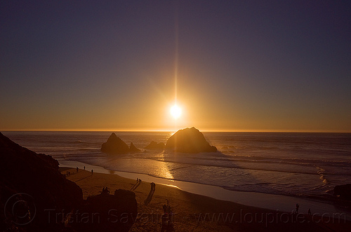 sunset on ocean beach, backlight, clear sky, horizon, ocean beach, seal rocks, seashore, silhouettes, sunset
