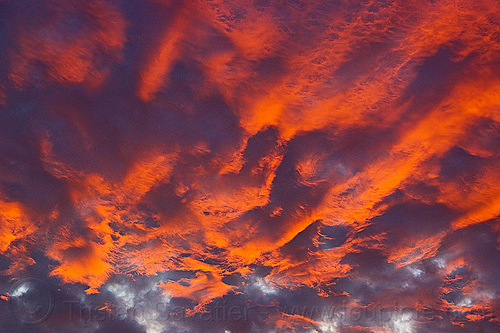sunset sky - high clouds, clouds, cloudy, grazing light, orange, pink, sunset sky