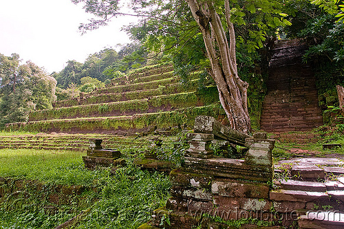 terraces and stair - wat phu champasak (laos), hindu temple, hinduism, khmer temple, ruins, stone stairs, terraces, wat phu champasak