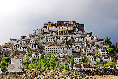 thiksey monastery - thiksey gompa, architecture, gompa, hill, houses, india, ladakh, leh valley, thikse, thiksey, tibetan monastery