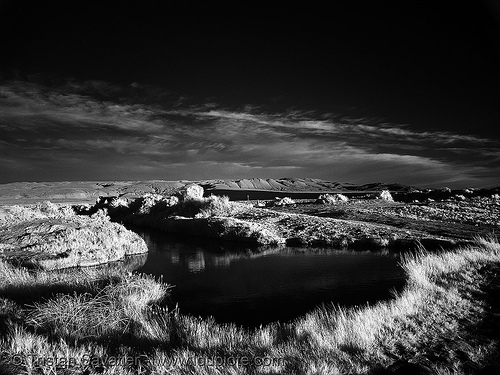 trego hot springs pool - daylight infrared (black rock desert, nevada), mud, mud bath, muddy, near infrared, water