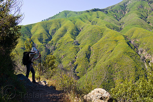 trekking in the vantana wilderness (california), backpack, backpacking, big sur, people, pine ridge trail, sharon, standing, stick, sun hat, trekker, walking stick, woman