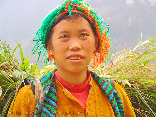 tribe girl carrying grass - vietnam, child, gold teeth, hill tribes, indigenous, kid, ma pi leng pass, mã pí lèng pass, tribe girl, woman