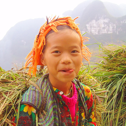 tribe girl carrying grass - vietnam, child, hill tribes, indigenous, kid, little girl, tribe girl