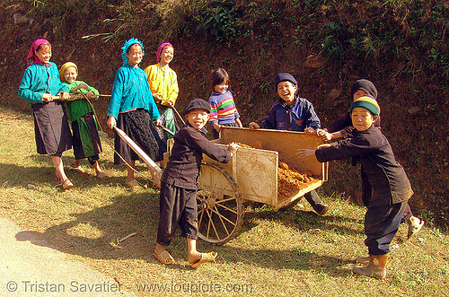 tribe kids working (and playing at the same time) - vietnam, children, colorful, hill tribes, indigenous, kids, playing, vietnam