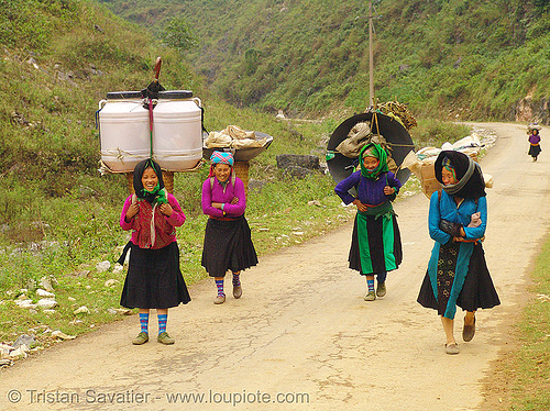 tribe women carrying huge loads - vietnam, asian woman, asian women, backpacks, colorful, freight, hill tribes, indigenous, load, porters, road, vietnam