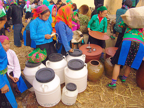 tribe women selling home-made corn wine (alcohol) - vietnam, corn alcohol, hill tribes, indigenous, market, mèo vạc, people, rượu, rượu ngô, street market, vodka