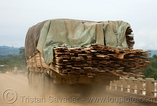 truck loaded with lumber (laos), dust, heavy load, lorry, road, timber, wood