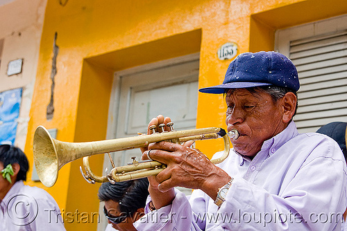 trumpet player - carnival in jujuy capital (argentina), andean carnival, argentina, jujuy capital, man, noroeste argentino, san salvador de jujuy, trumpet player