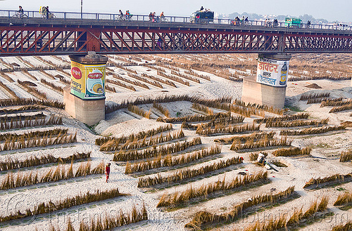truss bridge over ganga river floodplain, advertising, agriculture, bridge pillars, floodplain, ganga, ganges river, india, metal bridge, painted ad, riverbed, sand, truss bridge