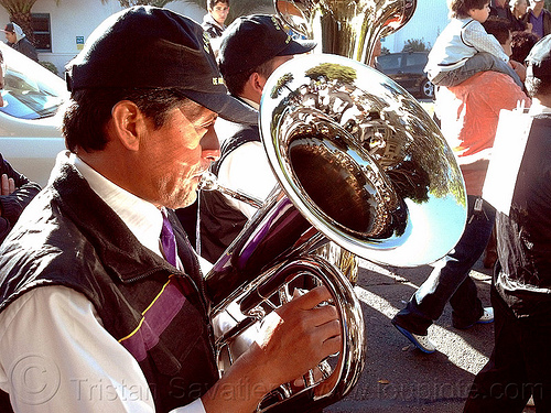 tuba player in brass band, brass band, crowd, lord of miracles, man, marching band, music, musical instrument, musician, parade, peruvians, playing, señor de los milagros, tuba player