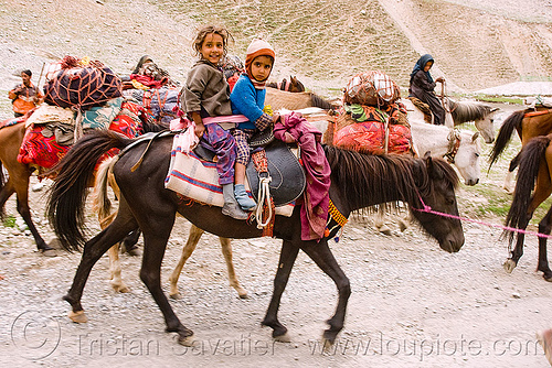 two kids riding a horse - nomads with horses - leh to srinagar road - kashmir, caravan, children, horse riding, horseback riding, india, kashmir, kashmiri gujjars, kids, mountains, muslim, nomads, pack animal, pack horses, road, zoji la, zoji pass, zojila pass