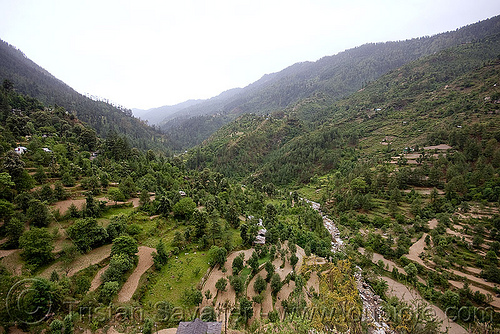 valley north of jalori pass (india), agriculture, fields, mountains, river, terrace farming, terraces, trees, valley